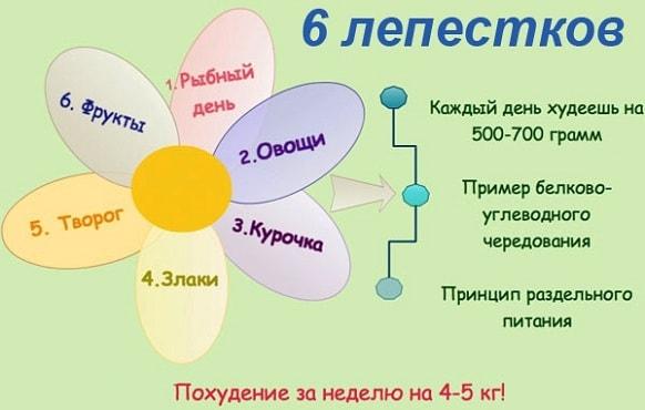 foto dieta 6 lepestkov menju 1