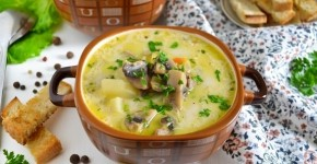 foto syrnyj sup 6
