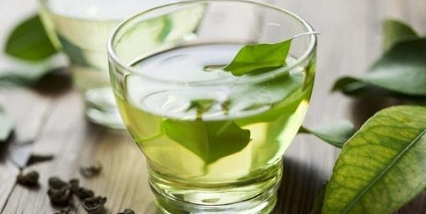 foto polza zelenogo chaja 4